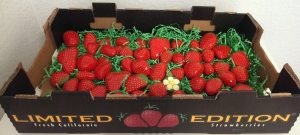 box of strawberries painted rocks for home decor or your garden