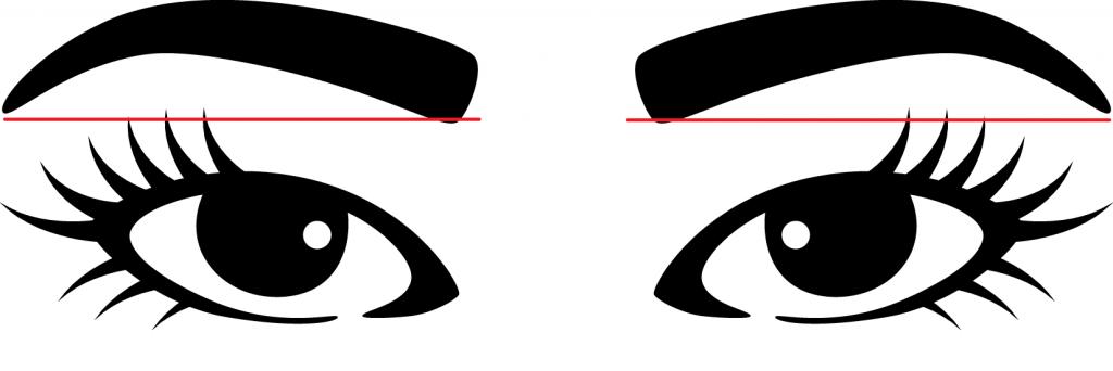 eyebrow tail length