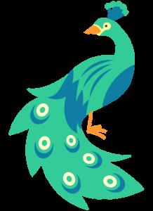 blue green peacock